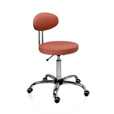 D10L - стул врача с опорой спины